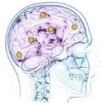 Memorija, koncentracija